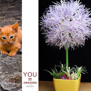 cara membuat bunga dari sedotan beserta gambarnya yang mudah