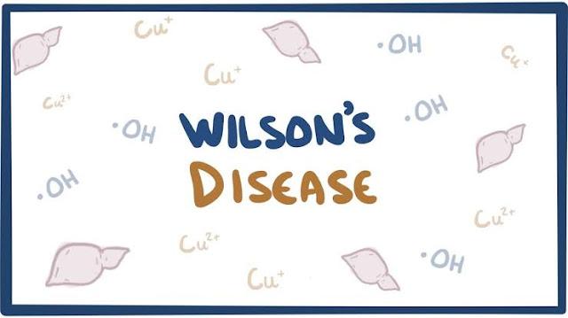 Wilson Rog