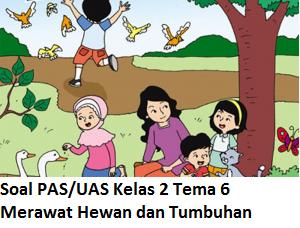Soal Pat Kelas 2 Tema 6 Merawat Hewan Dan Tumbuhan Dan Kunci Jawabannya Soal Dan Jawaban