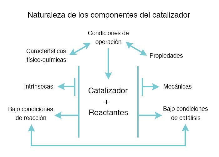 Esquema de la naturaleza de los componentes de un catalizador