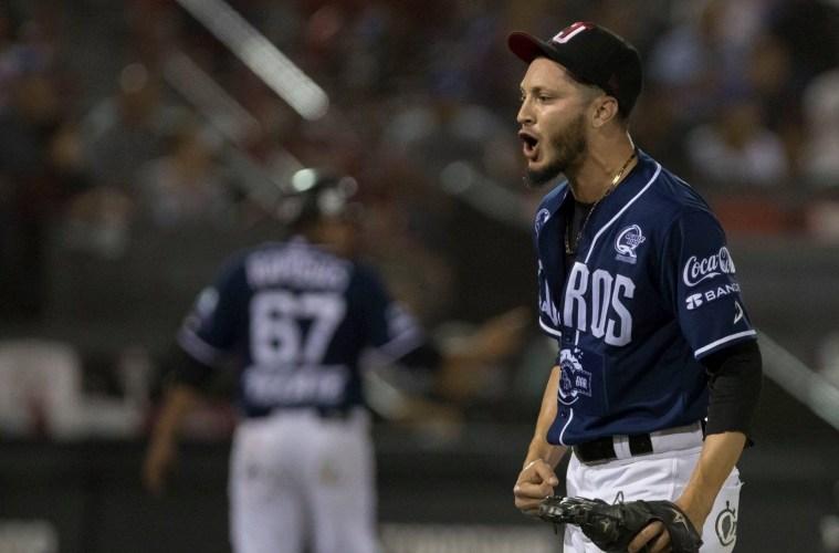 Breves de la semifinal del béisbol en Venezuela