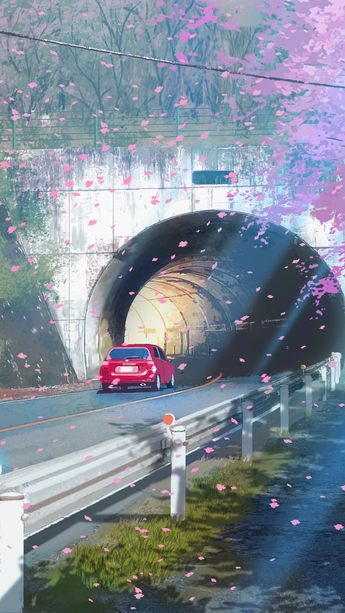 Drive through the cherry blossoms art wallpaper