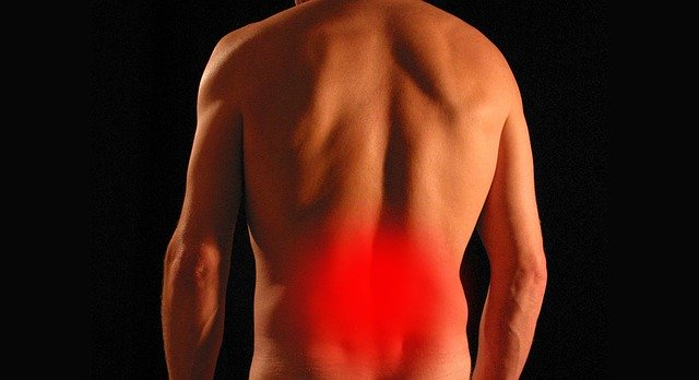 Reasons for LOW BACK PAIN