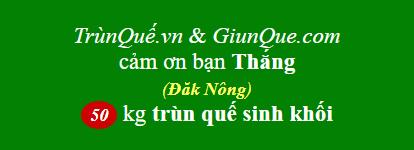 Trùn quế Đăk Nông