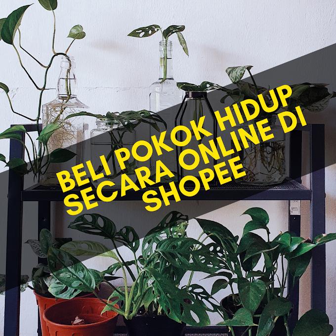 Beli Pokok Hidup Secara Online Di Shopee (Senarai Seller Shopee)