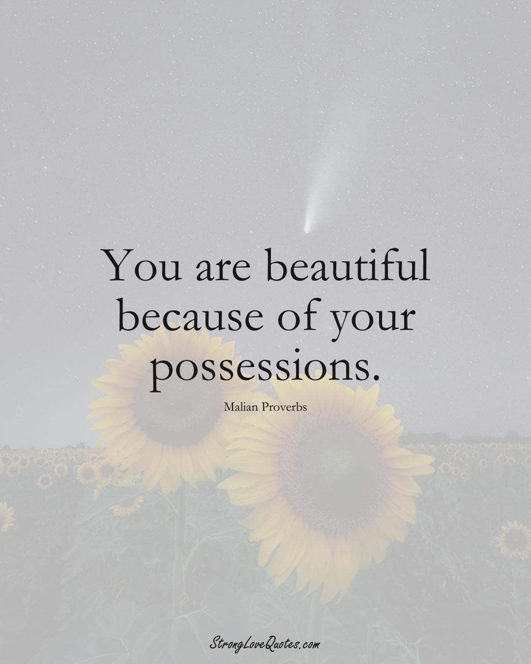 You are beautiful because of your possessions. (Malian Sayings);  #AfricanSayings