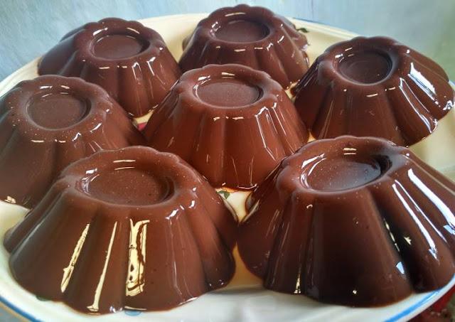 Resep Cara Membuat Puding Coklat Nutrijel