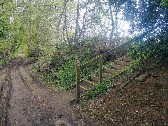 The steps leading to Hatfield footpath 53