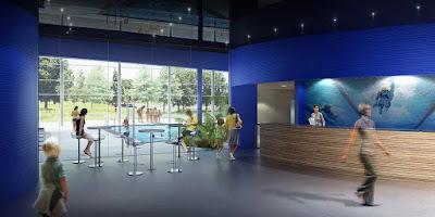 Perspective 3d hall d'accueil piscine concours