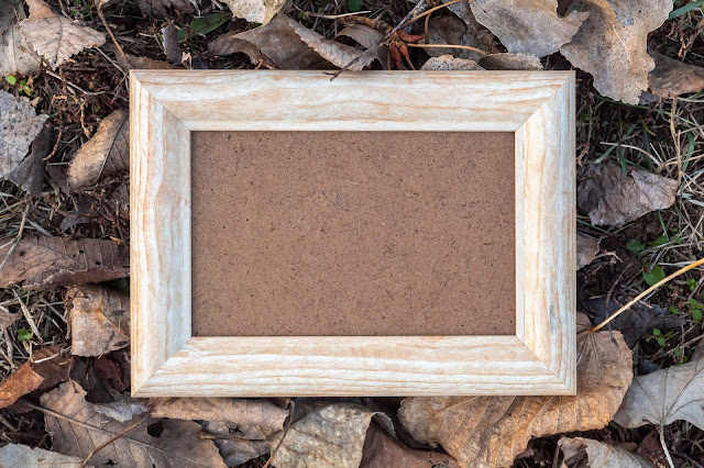 Empty Photo Frame Surrounded by Autumn Leaves in Natural Environment Free JPEG Image