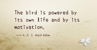 """The bird is powered by its own life and by its motivation."""