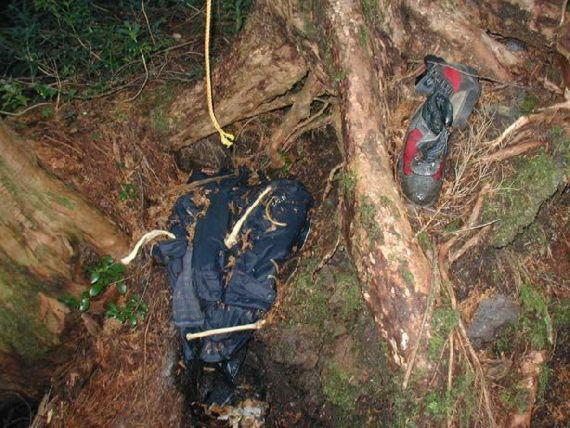 Interesting Facts: Aokigahara Forest – One of the Creepiest Places