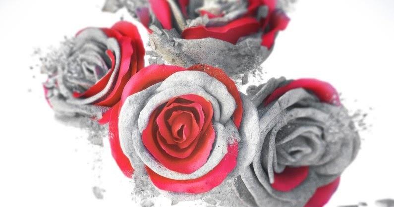 Letní čtení 2017 | Blood Rose Rebellion