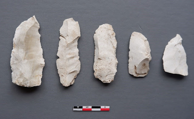 Aceramic Neolithic site discovered in Cyprus