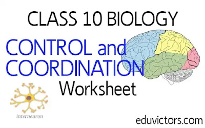 CBSE Class 10 - Biology - Control and Coordination (Worksheet - Fill in the Blanks)(#eduvictors)(#cbse)(#Class10Biology)