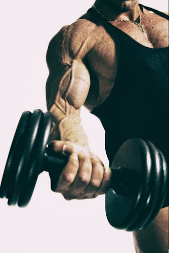 The best way to exercise the arms