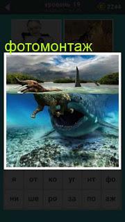 сделан фотомонтаж акула под водой хочет проглотить слона 19 уровень 667 слов