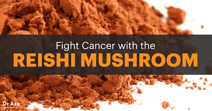 Can the reishi mushroom cure cancer?