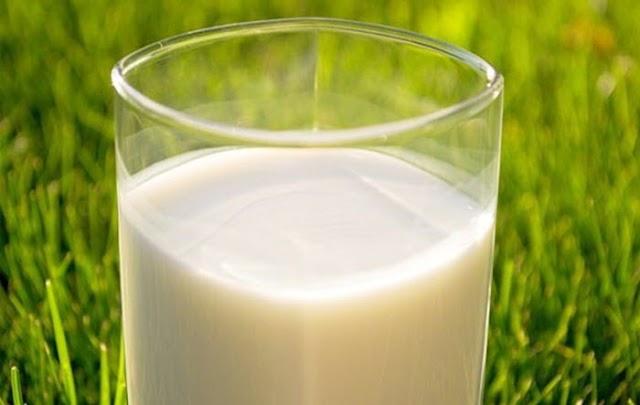Những sự thật về sữa tươi mà có thể bạn chưa biết