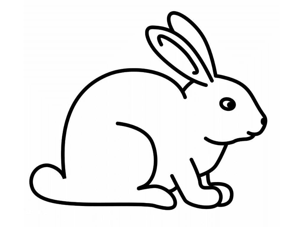 Belajar Mewarnai Gambar Kelinci