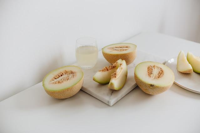 Hydroponic Melon Greenhouse
