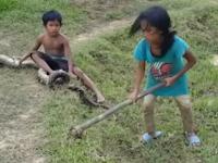 Menyayat Hati! Dua Anak Kecil Mencari Ular Liar Demi Sesuap Nasi