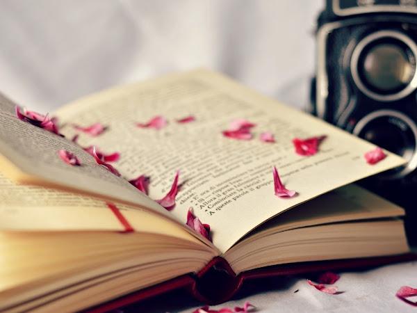 Segnalazione San Valentino In Love Di Autori Vari