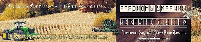 ЗЕРНОВЫЕ Пшеница, Кукуруза, Овес, Рапс, Ячмень, Купить Продать Украина Golden Spike