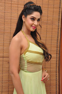 Actress Angana Roy Latest Pohtos  in Long Dress at Sri Sri Movie Audio Launch  0014