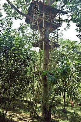 rumah-pohon-taman-kupu-kupu-gita-persada-tour-wisata-lampung-eloratour