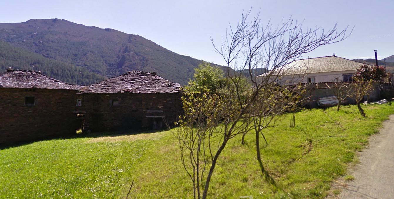 Flora Cantábrica Blog Archive Embalse De Grandas De Salime Nº 3