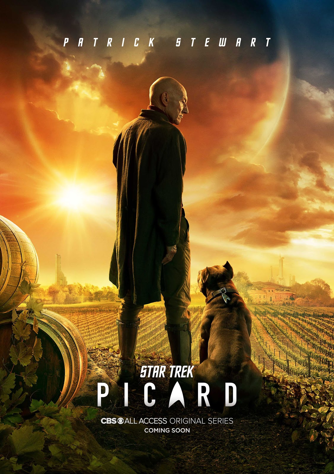 Star Trek Picard season 1 key art
