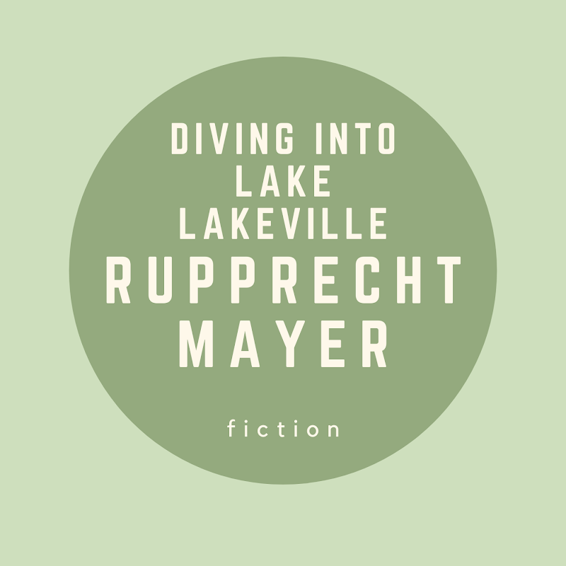 Diving into Lake Lakeville