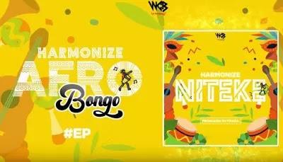 Download Audio | Harmonize - Niteke