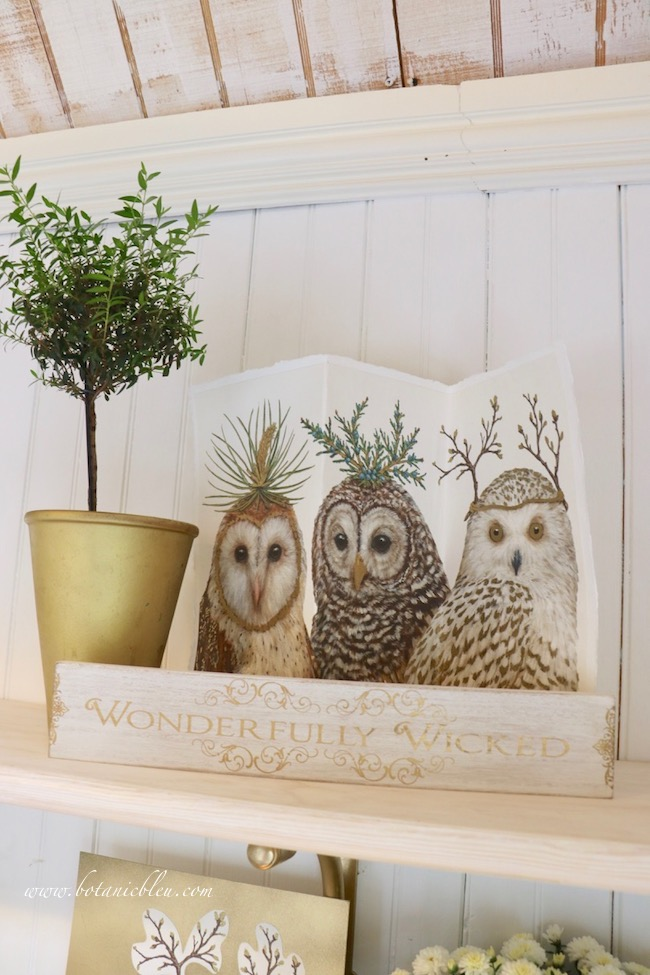 Wood Halloween message boards and owl prints add unexpected pizzazz to open shelves for fall