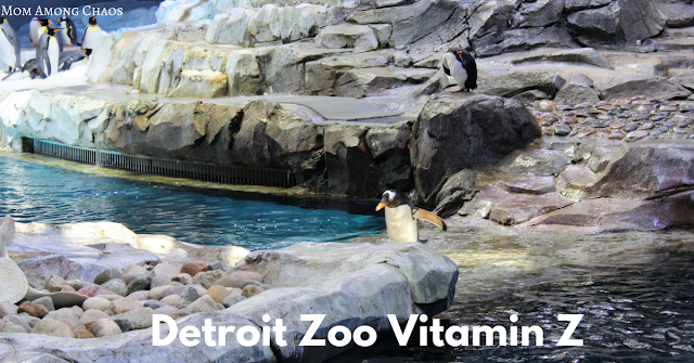 Detroit Zoo Vitamin Z, Metro Detroit, things to do, Detroit Zoo, membership, kids, family