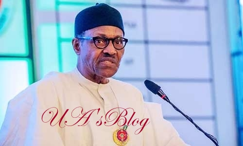 I'll end illegal tax collections – Buhari