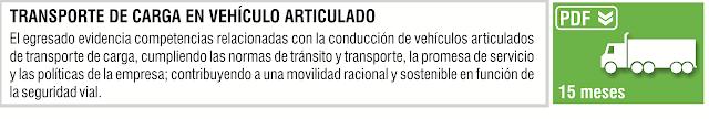 TRANSPORTE DE CARGA EN VEHICULO ARTICULADO