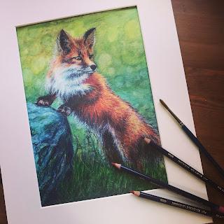 Fox painting using Derwent Inktense Pencils