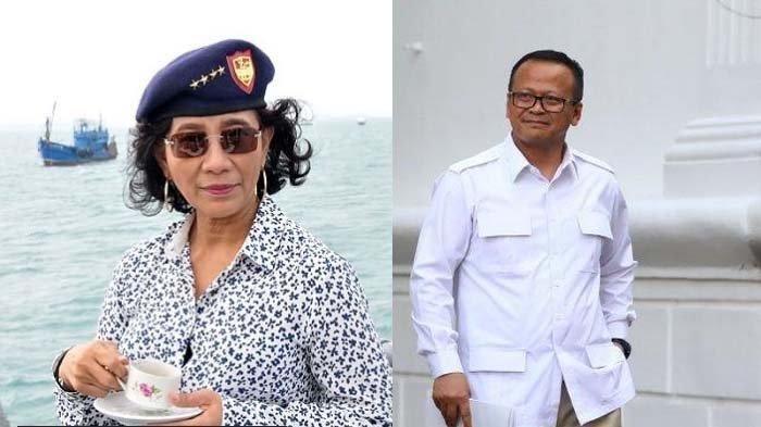 Dianggap Recoki KKP, Susi Pudjiastuti: Saya Memang Tidak Rela Bibit Lobster Diekspor