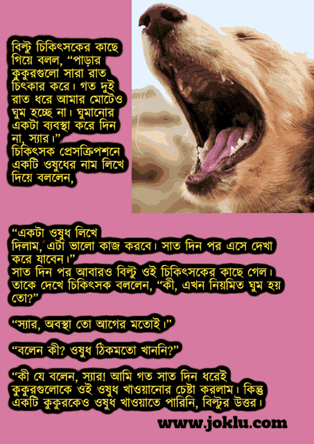 Dogs barking at night Bengali funny short story