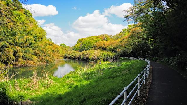 幕張の浜から花見川サイクリングコースを通って佐倉へ出て、印旛沼自転車道で印旛沼を横断して「県立房総のむら」に寄り成田山新勝寺へ走るサイクリングコース