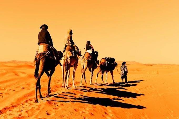 35 Curiosidades aleatórias sobre os desertos