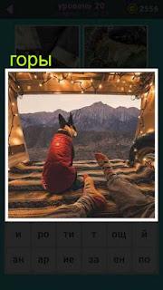сидит собака в палатке и смотрит впереди себя на горы 20 уровень 667 слов