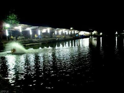 umpan galatama ikan bawal malam hari