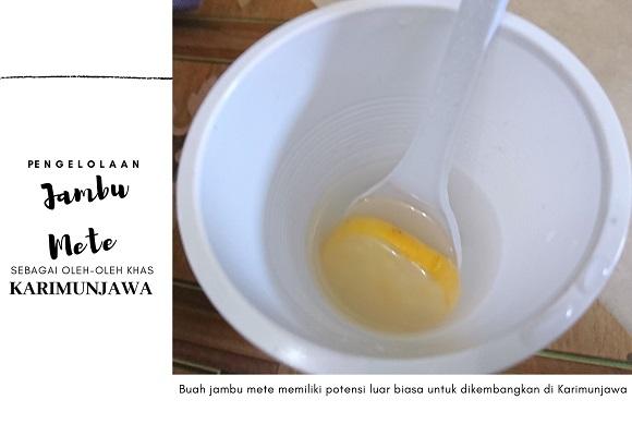 sirup-anti-batuk-dar-jambu-mete