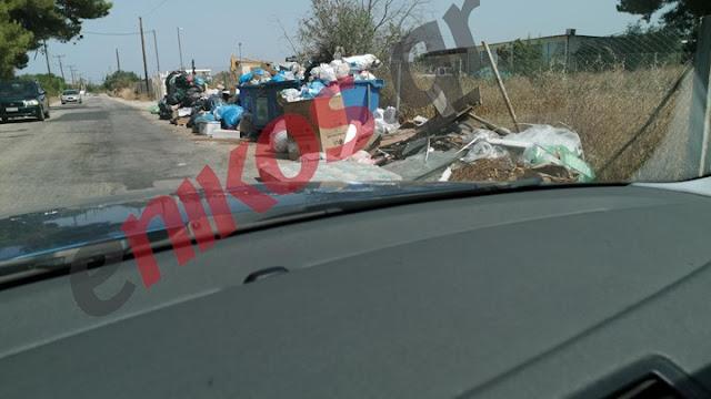 Δρόμοι γεμάτοι σκουπίδια στο Πόρτο Xέλι