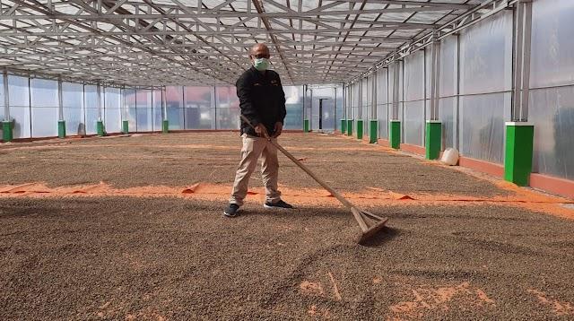 Pengamat: Sistem Resi Gudang Pendorong Ekonomi  Petani