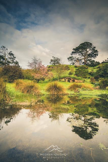 Reflections of Hobbiton