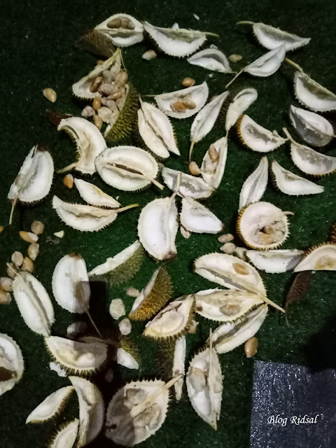 Menikmati Aneka Olahan Durian di Hotel Radisson Medan 04